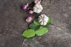 Cipolle, aglio, foglie della calce del kaffir Immagini Stock