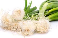 Cipolle bianche con i gambi verdi immagini stock