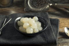 Cipolle bianche marinate organiche del cocktail Fotografie Stock Libere da Diritti