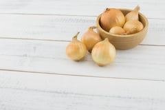 Cipolle in ciotola di legno Fotografia Stock