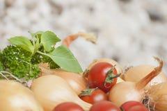 Cipolle del rendimento di autunno intere, pomodori ciliegia e basilico e prezzemolo freschi al sole Fotografia Stock
