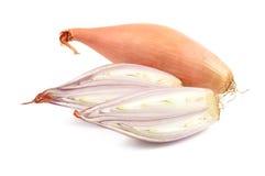 Cipolle dello scalogno su un fondo bianco Immagini Stock