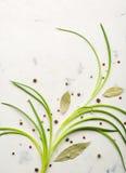 Cipolle di inverno con le spezie e la foglia di alloro su un fondo di pietra leggero Fotografia Stock