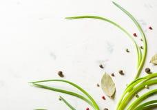 Cipolle di inverno con le spezie e la foglia di alloro su un fondo di pietra leggero Fotografie Stock Libere da Diritti