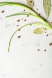 Cipolle di inverno con le spezie e la foglia di alloro su un fondo di pietra leggero Fotografia Stock Libera da Diritti