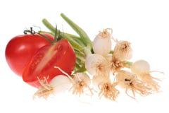 Cipolle e pomodori della sorgente Immagini Stock Libere da Diritti