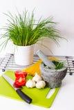 Cipolle e pomodori sul contatore di cucina Immagini Stock Libere da Diritti
