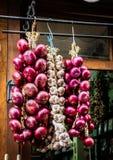 Cipolle e treccia dell'aglio immagini stock