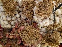 Cipolle ed aglio fotografia stock