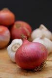 Cipolle ed aglio Immagini Stock
