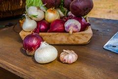 Cipolle ed aglio Fotografie Stock