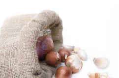 Cipolle ed aglio nella borsa Immagine Stock Libera da Diritti