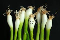 Cipolle felici Fotografia Stock