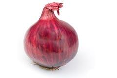 Cipolle rosse Immagini Stock