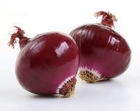 Cipolle rosse (allium) Fotografie Stock