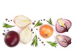 Cipolle rosse con i rosmarini ed i granelli di pepe isolati su fondo bianco con lo spazio della copia per il vostro testo Vista s Immagine Stock