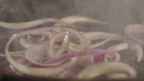 Cipolle rosse dell'insalata che cadono su una griglia rovente video d archivio