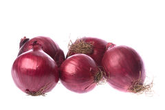 Cipolle rosse isolate fotografia stock libera da diritti