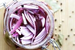 Cipolle rosse marinate Fotografie Stock