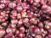 Cipolle rosse nell'abbondanza su esposizione al mercato locale del ` s Tailandia dell'agricoltore Grande fondo delle cipolle ross Fotografie Stock