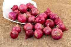 Cipolle rosse rovesciate fuori dalla ciotola bianca Immagine Stock