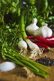 Cipolle verdi, aglio ed il Cile Fotografia Stock Libera da Diritti