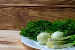 Cipolle verdi ed aneto sul piatto bianco sui precedenti dei bordi di legno fotografia stock