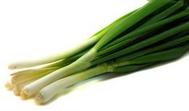 Cipolle verdi fresche Fotografia Stock