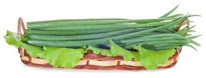 Cipolle verdi nel canestro Fotografia Stock Libera da Diritti