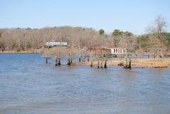 Cipresbomen op Meer tijdens de Winter Stock Afbeeldingen