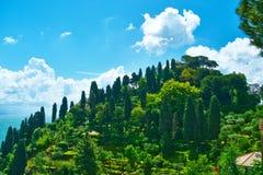 Cipresheuvel dichtbij Portofino-dorp Royalty-vrije Stock Afbeelding