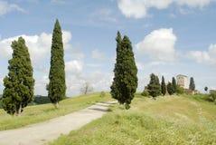 Cipressen en kasteel Stock Afbeeldingen