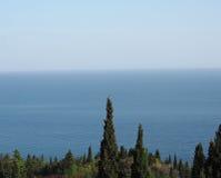 Cipresso del mare di orizzonte Immagine Stock Libera da Diritti