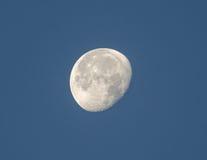Cirage de la lune gibbbeuse dans le ciel moning Image libre de droits