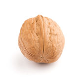 Circassian walnut Stock Photos