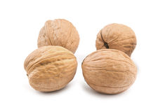 Circassian walnut Royalty Free Stock Photography