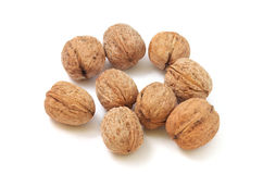 Circassian walnut Stock Images