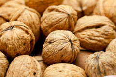 Circassian walnut in heap Stock Image