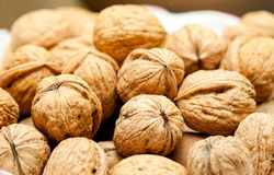 Circassian walnut in heap Royalty Free Stock Image