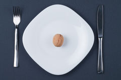 Circassian walnut on white plate Royalty Free Stock Photography