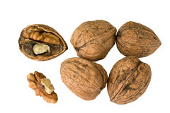 Circassian walnuts Royalty Free Stock Photo