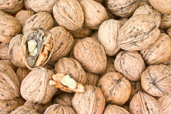 Circassian walnuts Royalty Free Stock Photos
