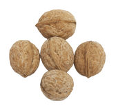 Circassian walnuts Stock Image