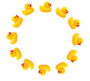 Circle. Several rubber yellow ducks forming a circle Stock Photography