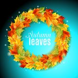 The circle of autumn leaves on a bright blue background, maple    colors, light, shine . Vector illustration. The circle of autumn leaves on a bright blue Royalty Free Stock Images