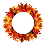 Circle background with autumn leaves. Vector eps-10. Royalty Free Stock Photos