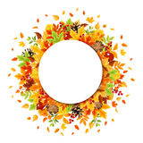 Circle background with colorful autumn leaves. Vector eps-10. Royalty Free Stock Photos