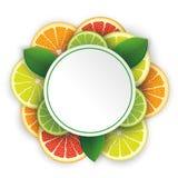 Circle Banner Citrus Fruits Shadows Stock Image