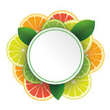 Circle Banner Citrus Fruits Stock Images
