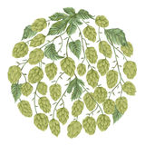 Circle banner with hop cones, leaves and branches. Isolated elements. Vintage hand drawn illustration in watercolor style Stock Photos
